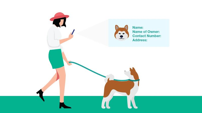 qr codes in china dog finder